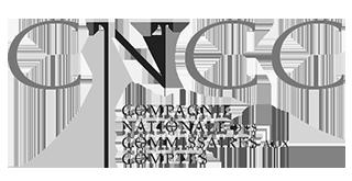 logo de la Compagnie Nationale des Commissaires aux Comptes dont dépend CommissaireAuxComptes.fr